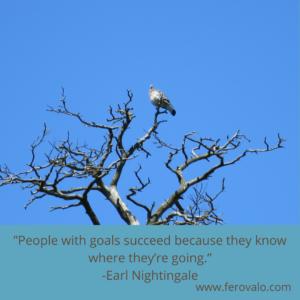 Earl Noghtingale quote