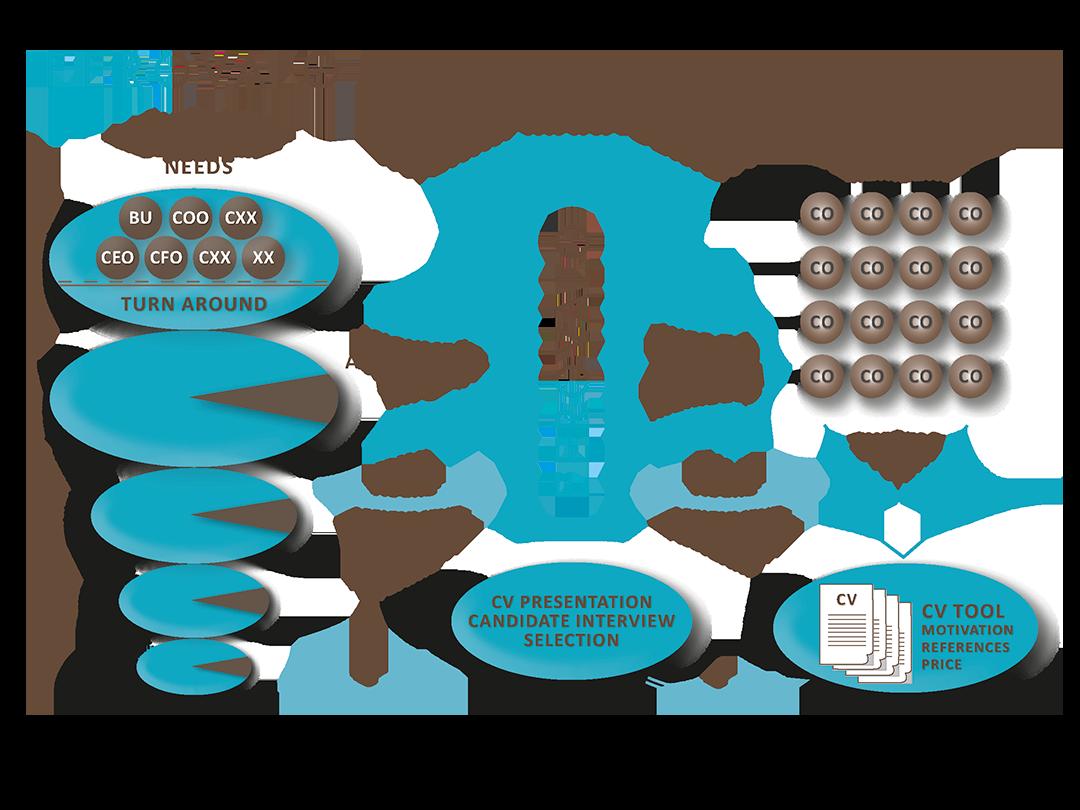 Interim Manager transparent process Vuokrajohtaja prosessi muutos