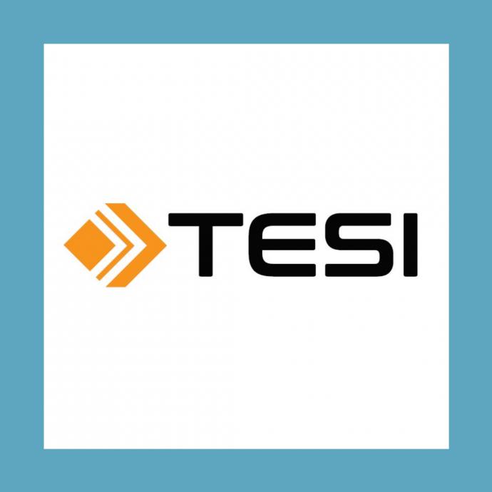 TESI CFO reference